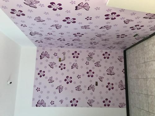 Interior Design murofania decorativa