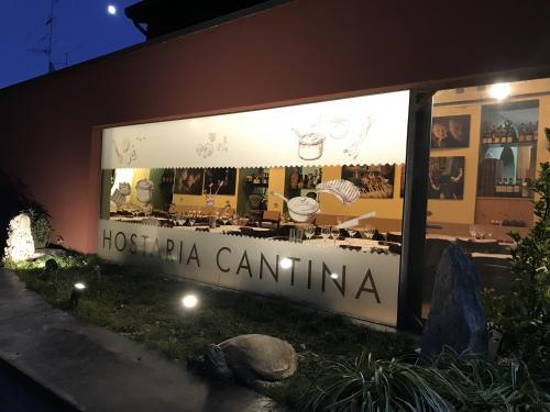 Vetrofania satinata Cascina costa 1